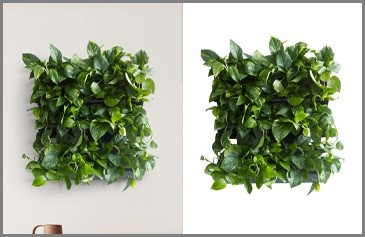 Complex Clipping Path - Flower bouquet