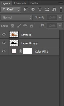 Step 3 : Duplicate Background Layer