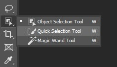 Select Quick Selection Tool